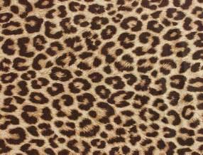 giraffe skin print stencil picture 7