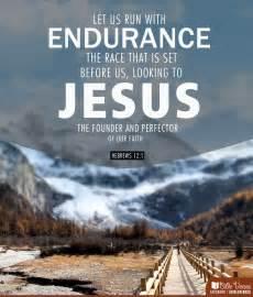 endurance picture 4