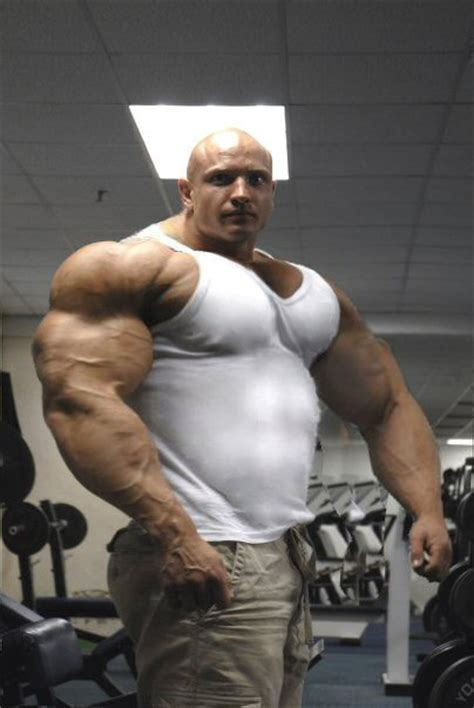 big-bellied muscle morphs picture 7