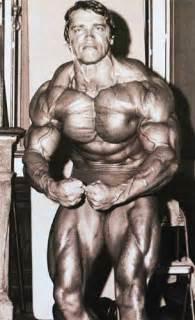 austin stallone bodybuilder picture 15