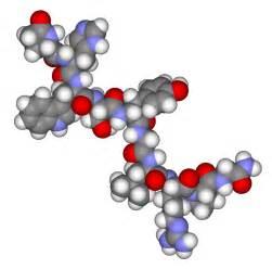 hormone picture 5