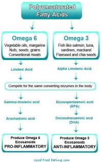 omega iii and anti-oxy & enzymes are good for what picture 1