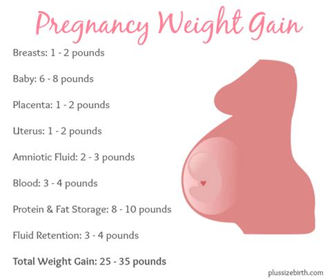 Pregnancy and weight gain picture 3
