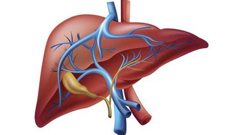 can liver failure kill you picture 2