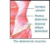 abdominal muscle strain picture 19
