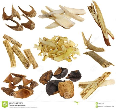 chinese herbal s l picture 9