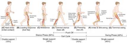 walking style or gait of homeopathic drug pictures picture 3