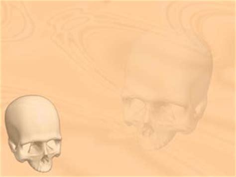 cranium pills picture 2