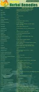 herbal medicine remedies picture 9