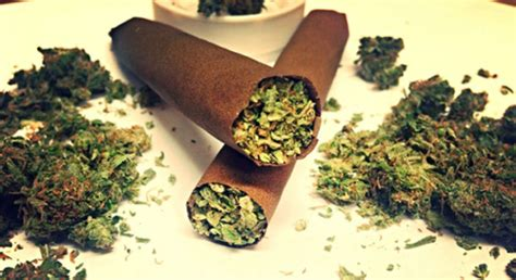 caffeine joint picture 3