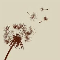 dandelion picture 17