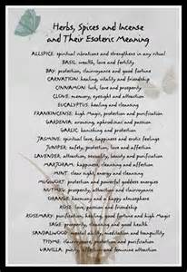 herbal meanings in witchcraft picture 1