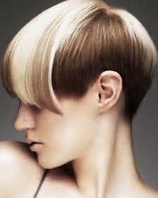 pictuers of hair styling trends picture 6