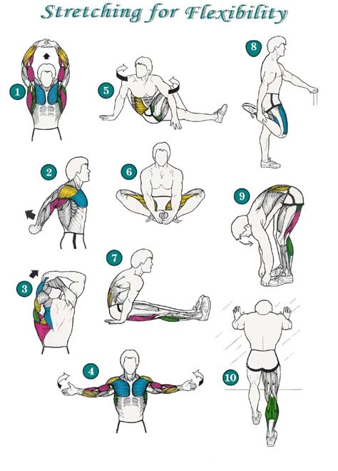 should i continue to lift weights help stretch picture 16