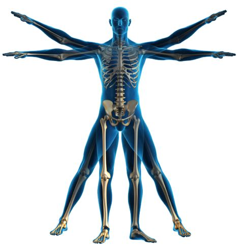 full body physical examination picture 9