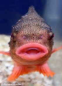 s trout lips picture 2