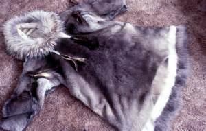 caribou skin clothing picture 13
