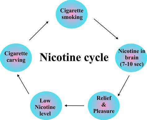 appetite stimulant drugs picture 6