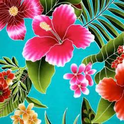 +hawaiin silky herbal picture 13