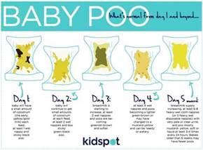 infant stringy bowel movement picture 9