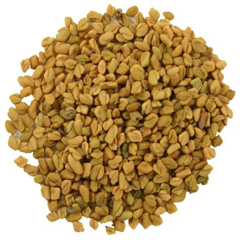 fenugreek seed picture 2