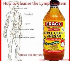 full body fat lymphatic cleanse picture 2