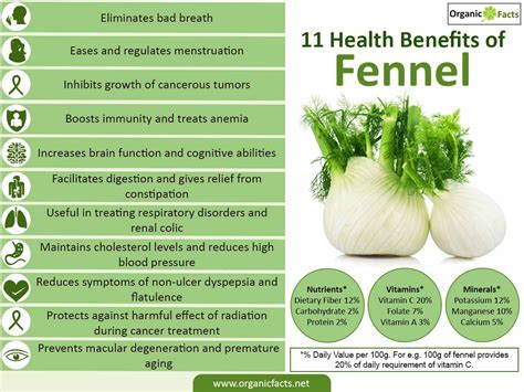 benefits of fennel tea for skin picture 4