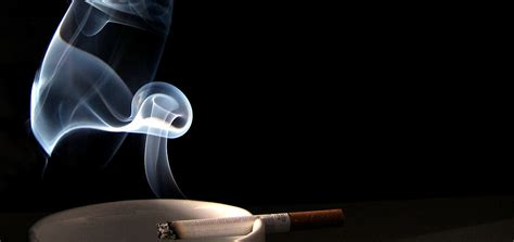 can you get cigar smoke removed from a house picture 7