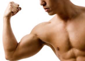 how to build bicep muscle picture 6