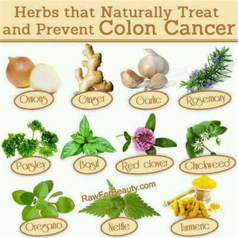 herbal curfor colon cancer picture 7