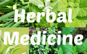 herbal medicine uk picture 2