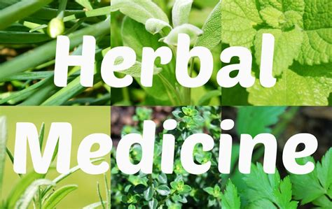herbal medecines picture 6