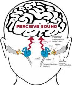 positive apd bowel sounds picture 13