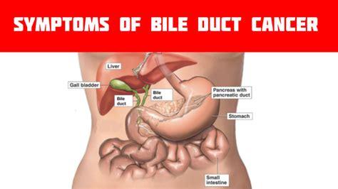 bowel obstruction symptoms picture 11