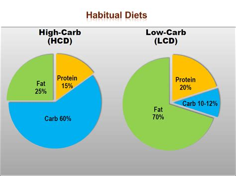 diet study picture 2