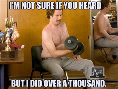 anchorman quotes, the ubulus muscle attaches to picture 2