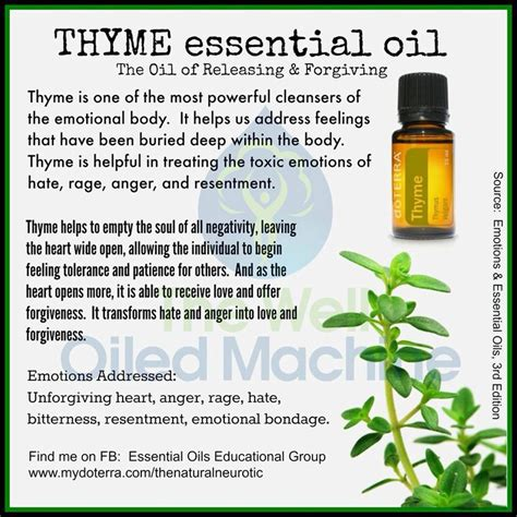essential oil of tyyme for cysts picture 9