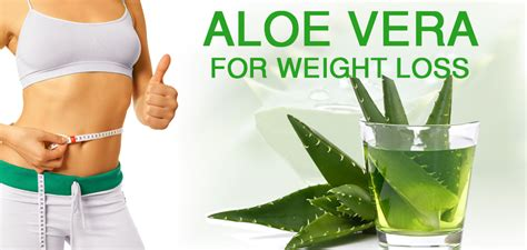 weight loss and aloe vera picture 3