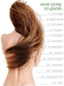 where can i buy hair formula 37 in picture 3