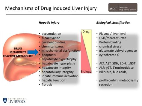 chemical and drug-induced liver disease picture 2