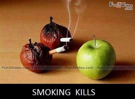 watermelon to stop smoking picture 13