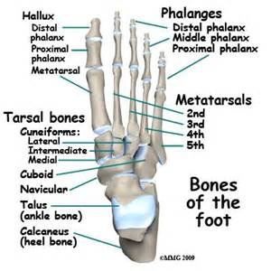 big toe metatarsal phalangeal joint foot sleeve picture 13