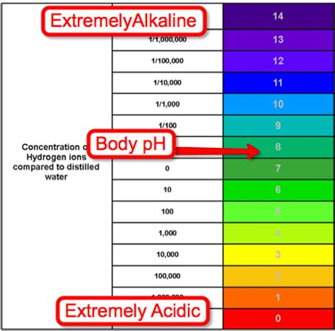 food and the acid-alkali balance of the body picture 8