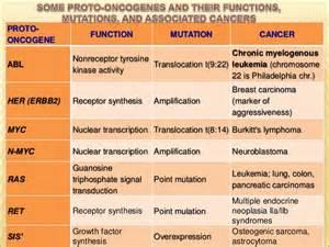 tumor suppressor genes tumor promoting genes oncogenes picture 1