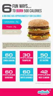 burning fat vs. burning calories picture 2
