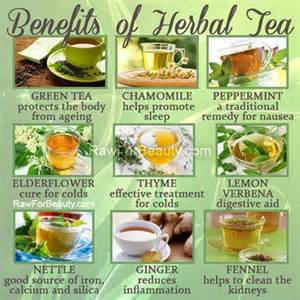 peppermint tea herbal remedies picture 1