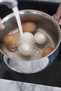 how to boils eggs picture 11