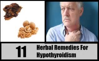 herbal remedy for hypothyroidism picture 3