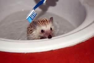 ma kichudai when ma take bath picture 12