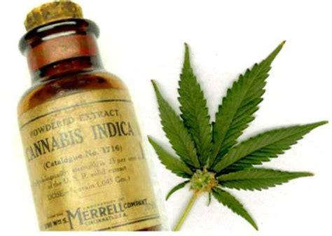 what supplements show up as thc? picture 4
